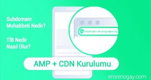 Wordpress Subdomain AMP CDN Kurulumu